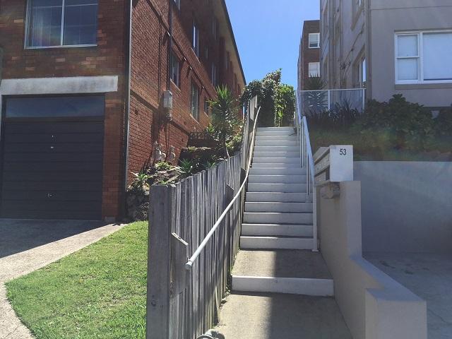 Stump Removal Northern Beaches, Sydney