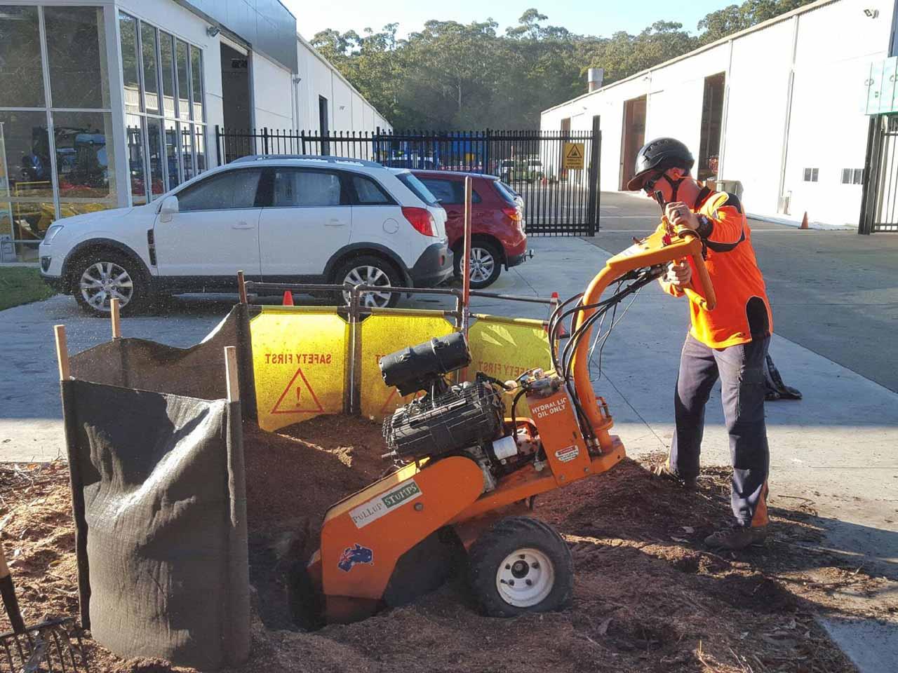 Industrial Tree Stump Work