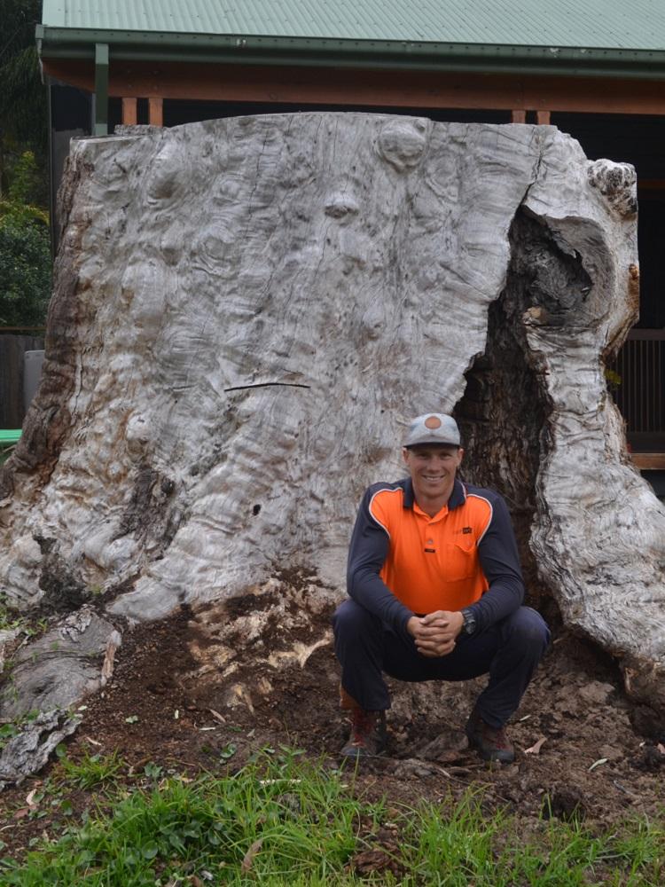 Ross Roberts Pullup Stumps Stump Grinders