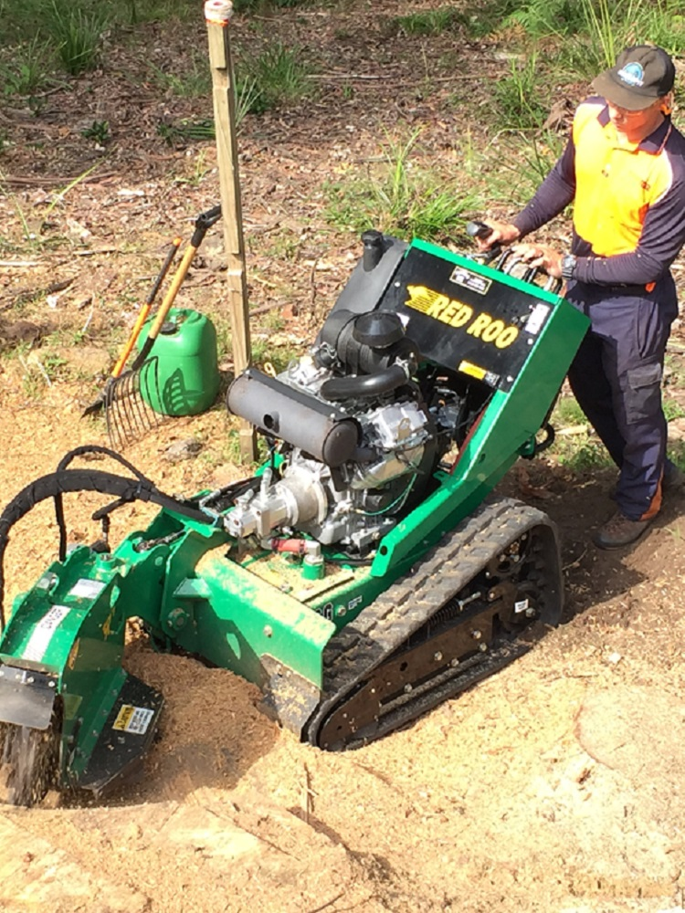 Stump Grinding Experts Wyong - Pullup Stumps