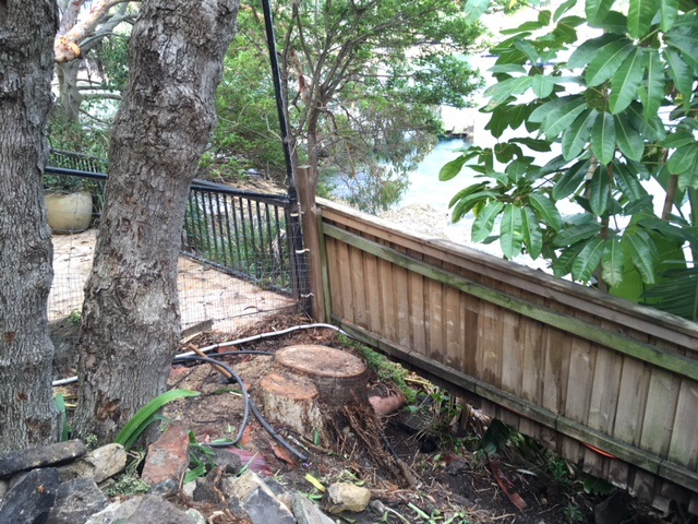 Stump Removal – Vaucluse, Sydney NSW