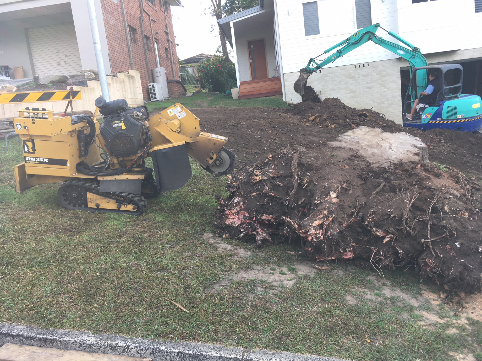 Stump Grinding Experts Pullup Stumps